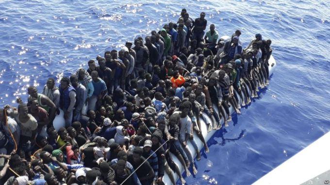 Migration pic